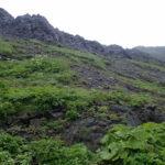 礼文島崖を見上げる