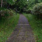 利尻島 登山道入り口から甘露水までの道