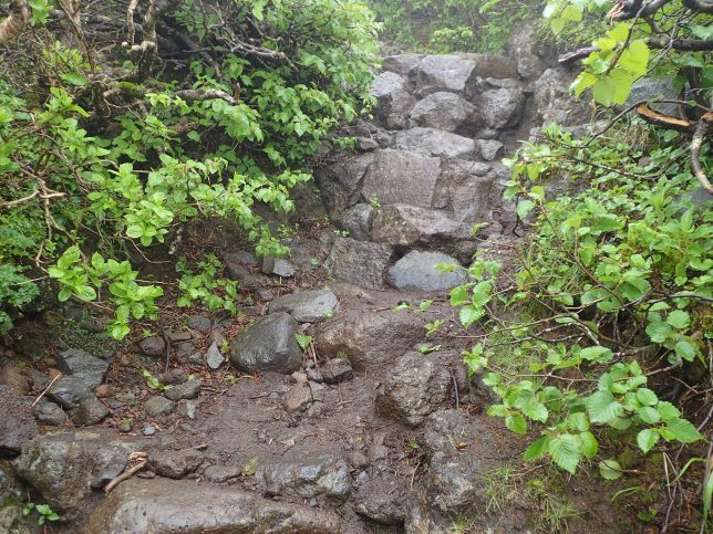 利尻島 登山道の状態