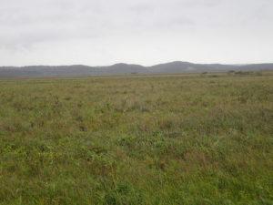 霧多布湿原琵琶瀬木道からの遠景