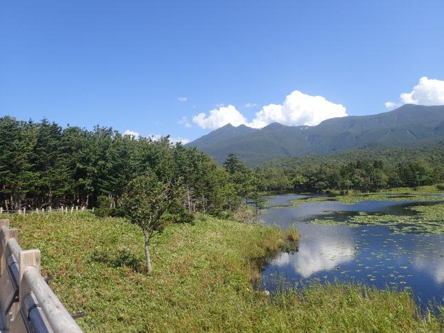 知床五湖(一湖:高架木道より)