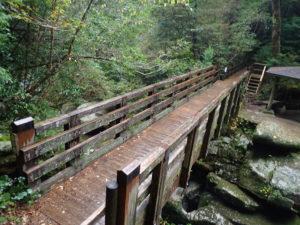 ヤクスギランド 苔の橋