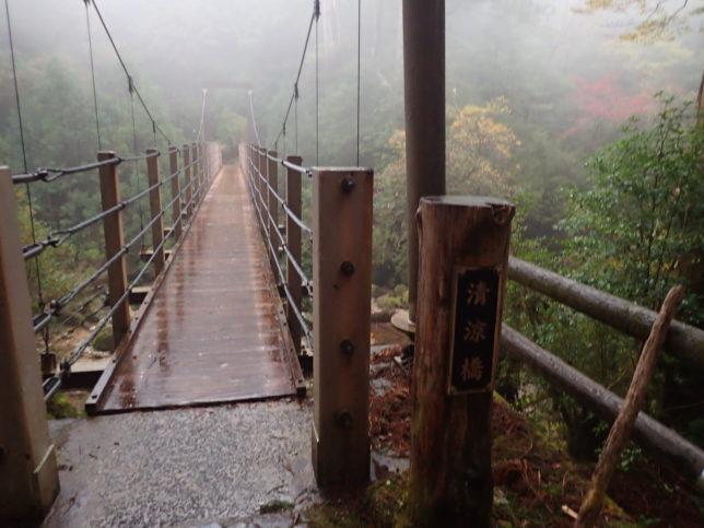 ヤクスギランド 清涼橋