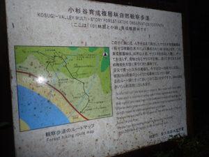 小杉谷育成複層林自然観察路