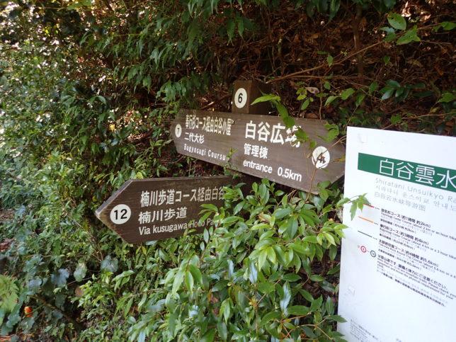 奉行杉コースと太鼓岩往復コースの合流点