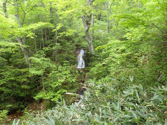 登山道沿いの小さな滝