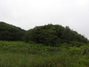 遺跡公園の外観