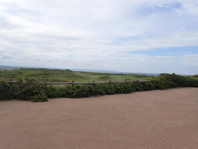原生花園から北浜方面を望む