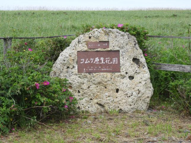 コムケ原生花園の石碑