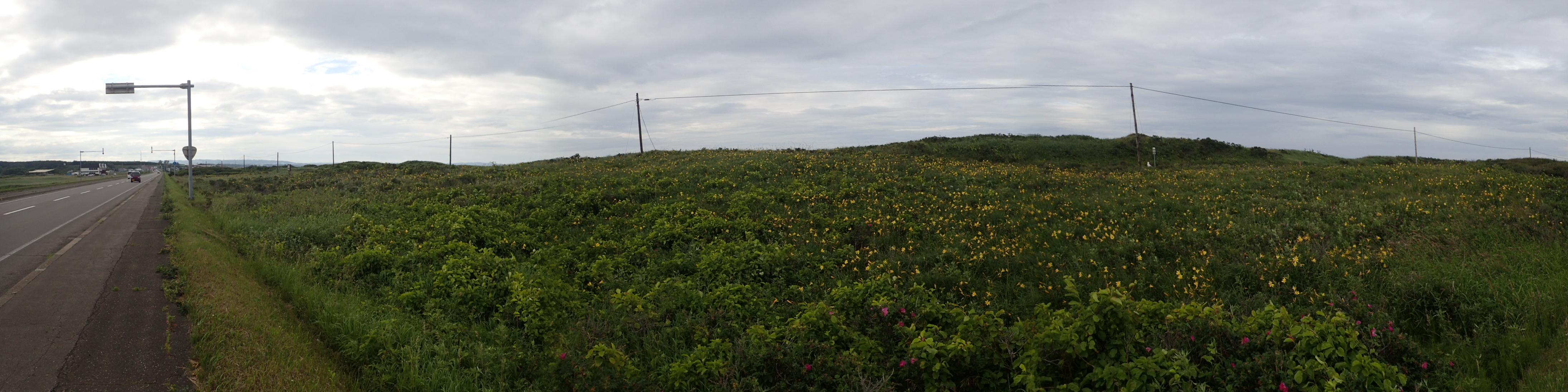 原生花園側から北浜への花園