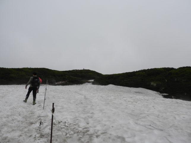 木道が終わるとすぐ残雪が
