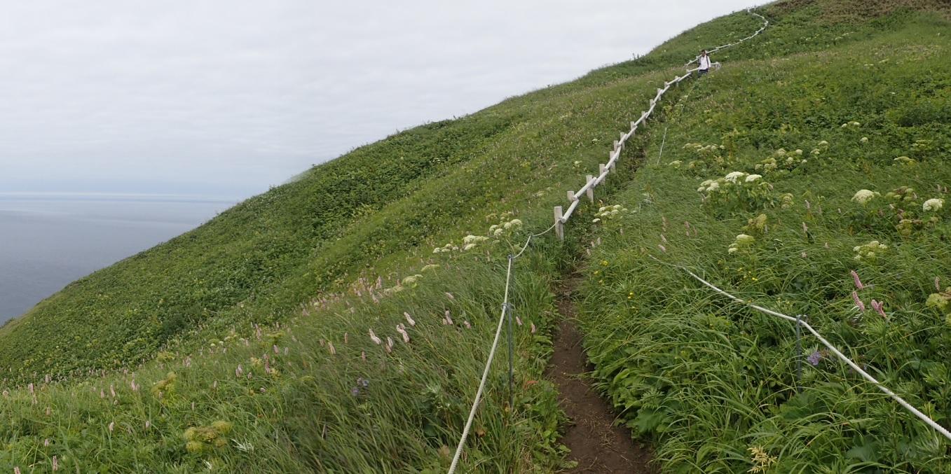 元地灯台に続く小高い丘の道