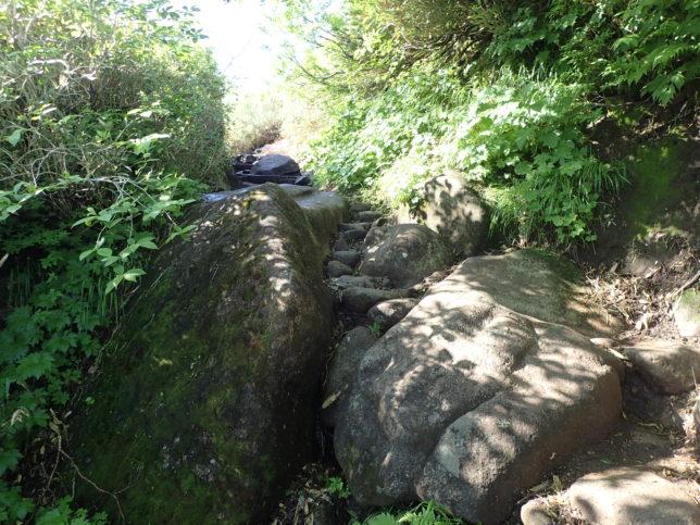 岩のつながる登山道