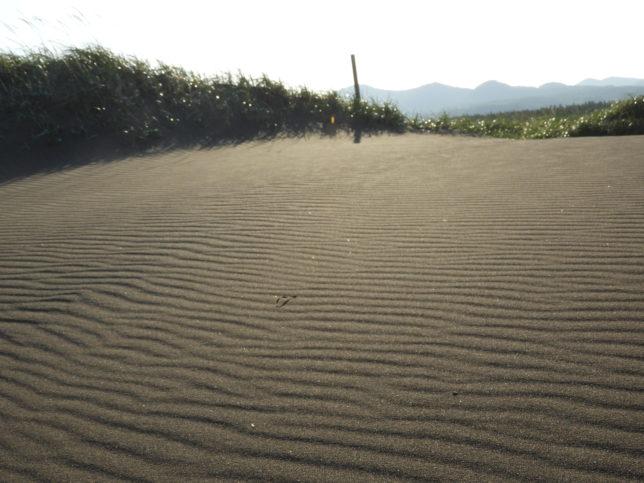 百人浜の風紋