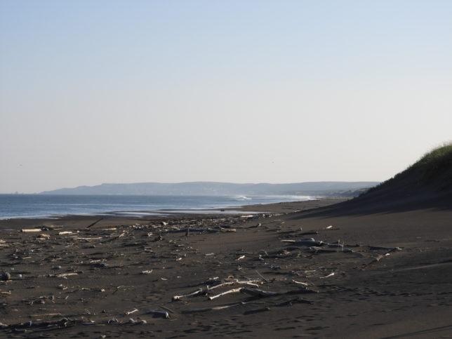 百人浜の砂浜(えりも岬側)
