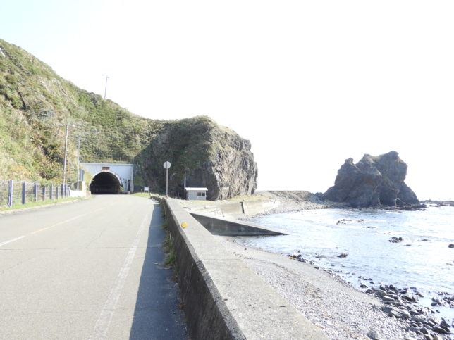 大正トンネルの花こう岩類