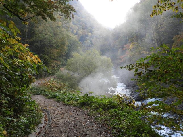 羽衣の滝に向かう道