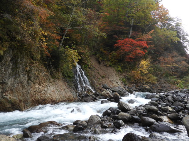敷島の滝に向かう川道