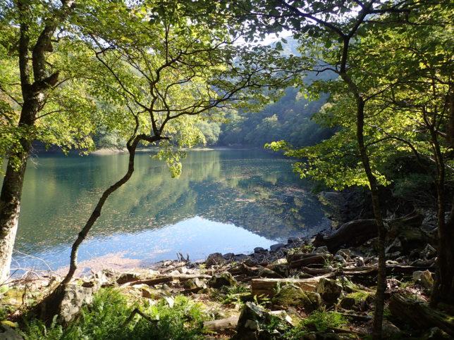 豊似湖入口近くの景観
