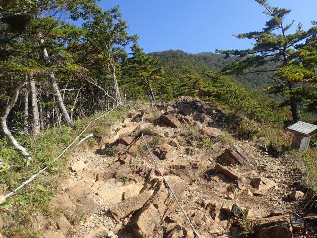 アポイ岳5合目からの登り口