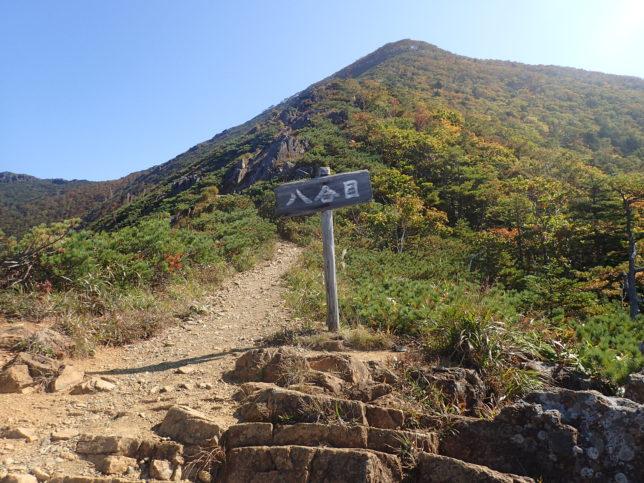 アポイ岳8合目
