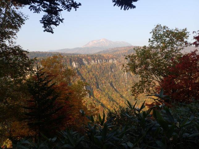 滝見台から旭岳を望む