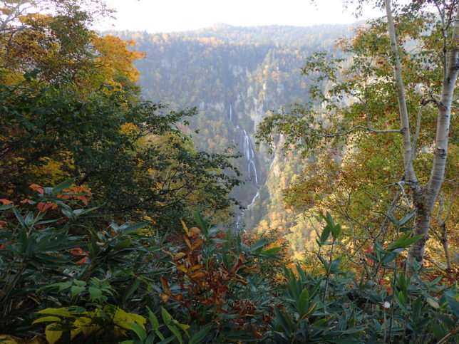 滝見台からの羽衣の滝
