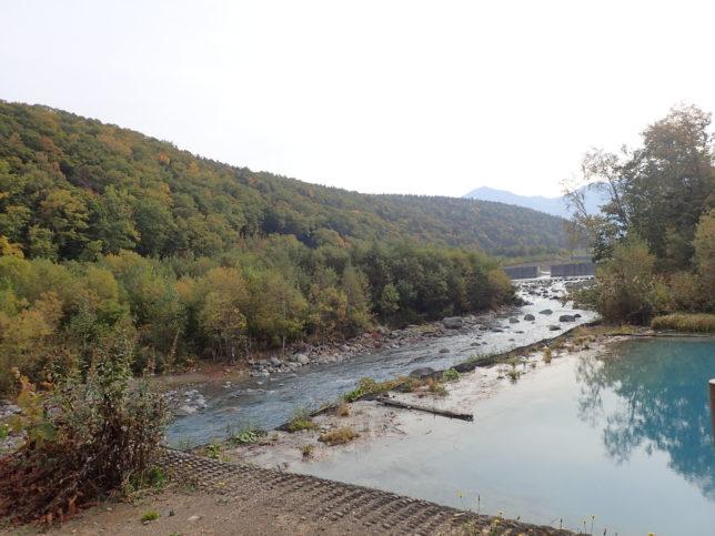 美瑛川との境目