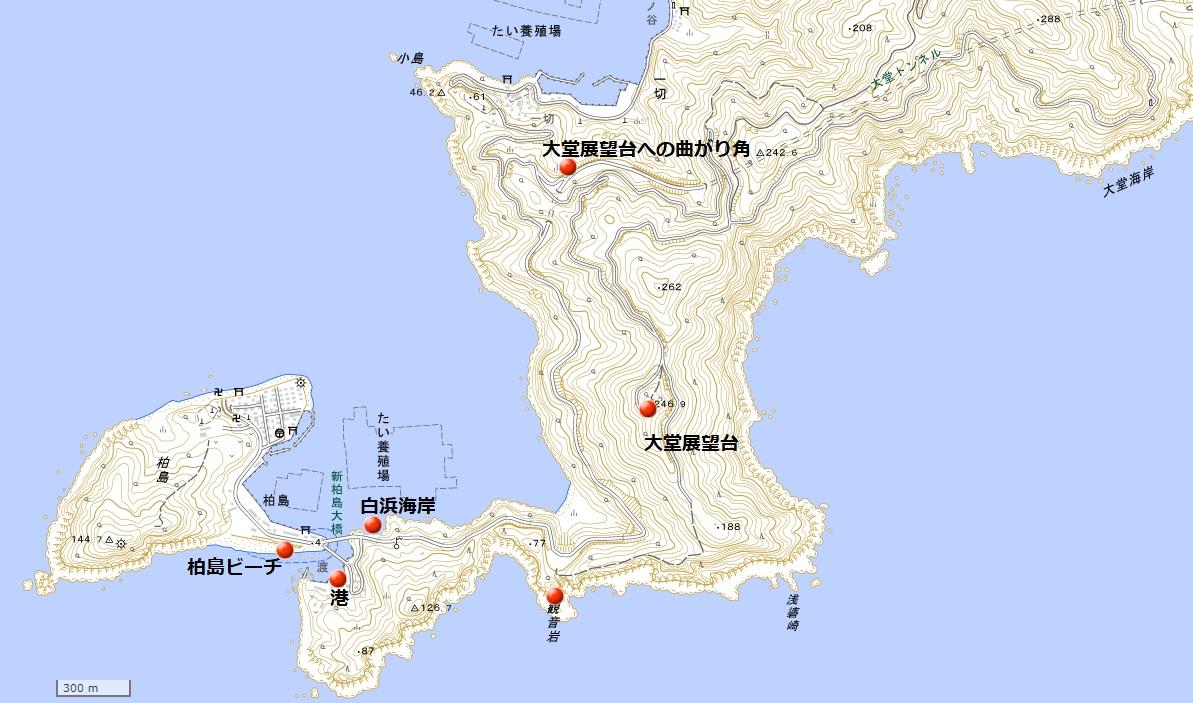 柏島周辺地図