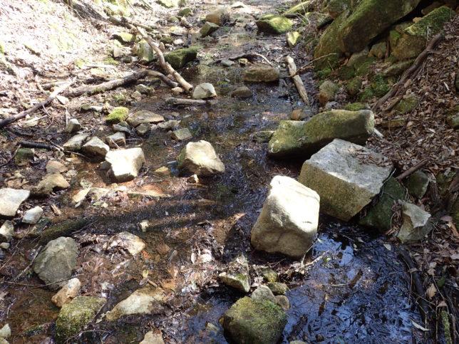 水に浸かる山道
