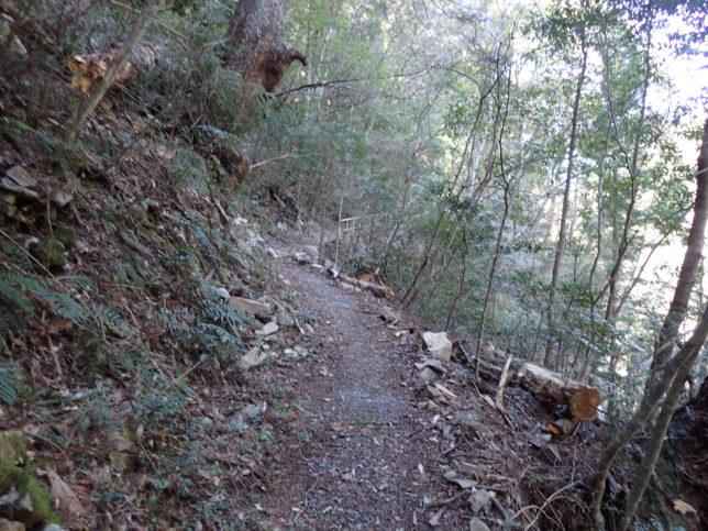 パノラマ台へ続く山道