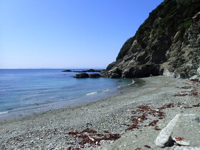 オソゴエ海岸(宇和海側)の浜辺