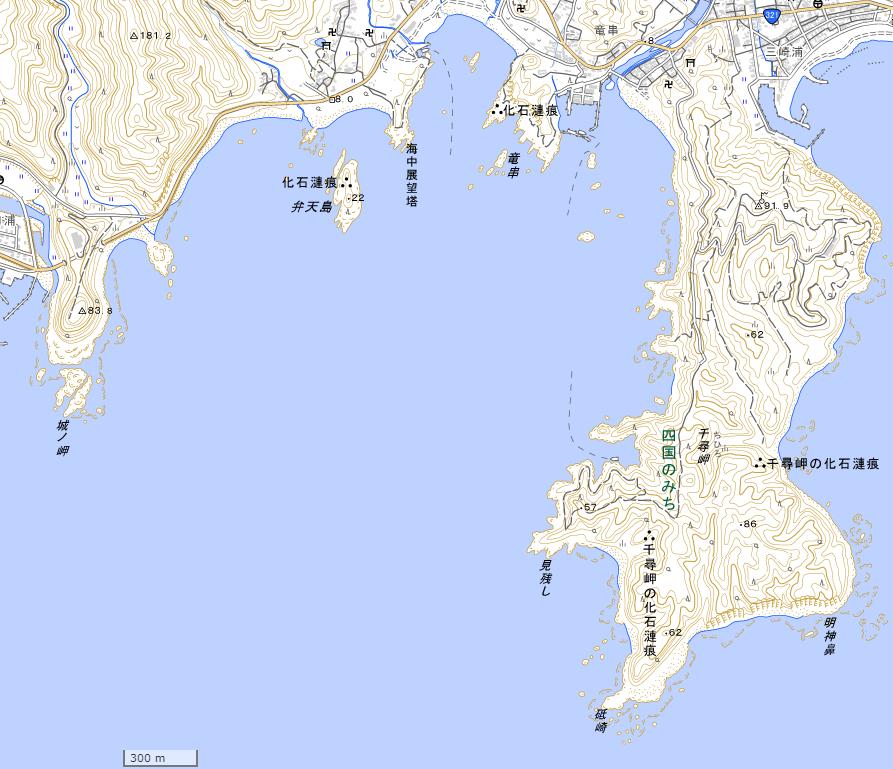 竜串周辺地図 (国土地理院地図閲覧サービスより)