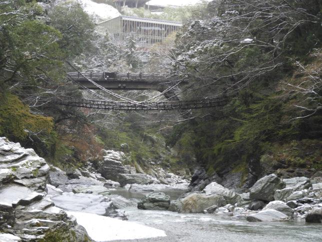 かずら橋(下から)