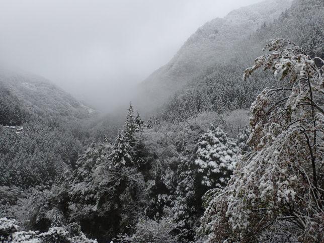 雪化粧した祖谷